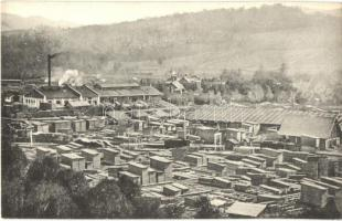 Vorokhta, Worochta; Ogólny widok tartaku / general view, saw mill