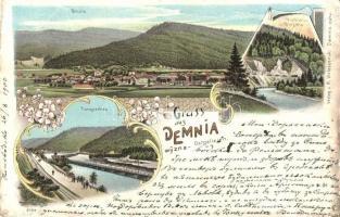 Demnia wyzna (Demnia), general view, river, Carpathian Ukraine, Verlag v. M. Wolaszezak floral Art Nouveau litho (Rb)