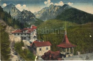 Tátra, Tarpatakfüred, Lomniczi csúcs / mountain peak (EK)