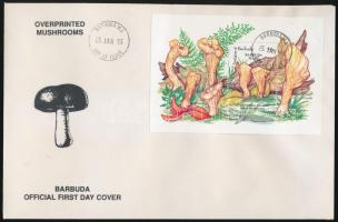 Gomba ívszéli sor + blokksor 3 db FDC-n Musroom margin set + block set on 3 FDC