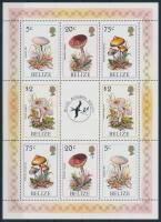 Gomba kisív Mushrooms minisheet