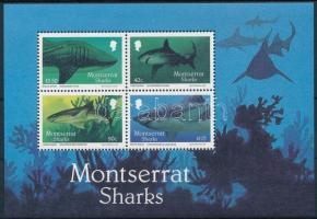 Sharks block, Cápák blokk