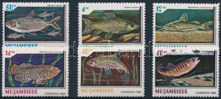 Fishes set Halak sor