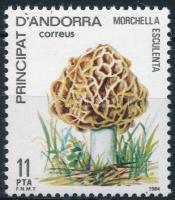 Gomba Mushroom