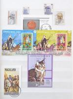 Nagaland és India gyűjtemények 4 lapos A/4 berakóban