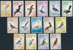 Madár sor Bird set