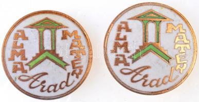 Románia DN Arad - Alma Mater zománcozott aranyozott jelvény (2x) (30mm) T:2 Romania ND Arad - Alma Mater enamelled, gilt badge (2x) (30mm) C:XF