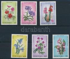 Flower set, Virág sor
