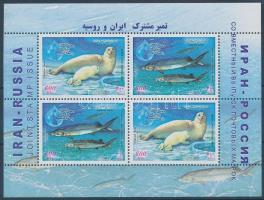 Halak és fókák blokk Fish and seal block