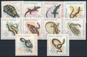 Reptiles set, Hüllők sor
