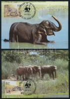 WWF: Elefánt sor 4 db CM-en WWF: Elephant set on 4 CM