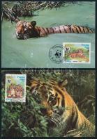WWF: Tigris sor 4 db CM-en WWF: Tiger set on 4 CM