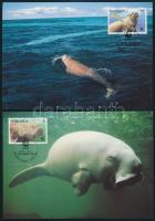 WWF: Dugong sor 4 db CM-en WWF: Dugong set on 4 CM