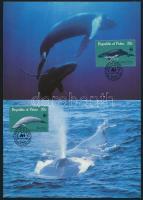 WWF: Bálna sor 4 db CM-en WWF: Whale set on 4 CM