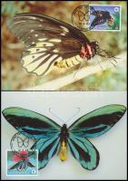 WWF: Pillangó sor 4 db CM-en WWF: Butterfly set on 4 CM