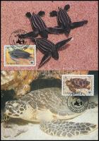 1983 WWF: Teknősök sor Mi 541 A-544 A 4 db CM-en