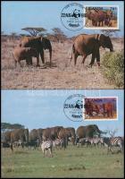 WWF: Afrikai elefánt sor 4 db CM-en WWF: African Elephant set on 4 CM