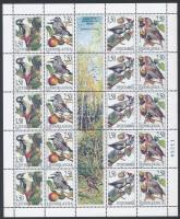 Védett állatfajok: madarak kisív, Protected species: birds minisheet