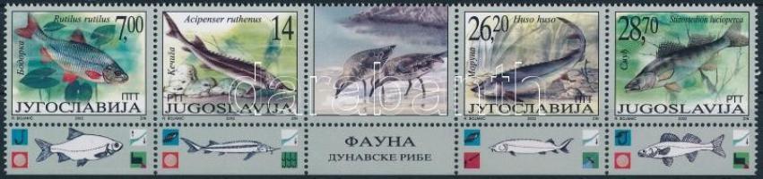 Fish set in margin coupon stripe of 5, Halak sor ívszéli szelvényes 5-ös csíkban