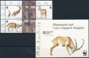 WWF block of 4 + stampbooklet sheet WWF négyestömb és bélyegfüzet