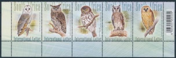 Bagoly ívsarki 5-ös csík Owl corner stripe of 5