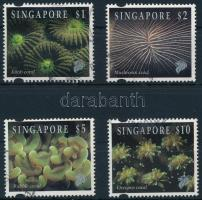 Forgalmi, korallok sor Definitive, corals set