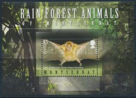 Rain forest inhabitants, bats block Esőerdő lakói, denevér  blokk