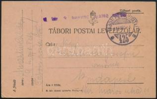 """Field postcard """"M.kir. 9. honvéd gyalog ezred"""" + """"TP 425 a"""" Tábori posta levelezőlap """"M.kir. 9. honvéd gyalog ezred"""" + """"TP 425 a"""""""