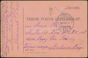 "Field postcard  ""M.KIR. 16. HONVÉD GYALOGEZRED"" + ""TP 425 b"" Tábori posta levelezőlap ""M.KIR. 16. HONVÉD GYALOGEZRED"" + ""TP 425 b"""