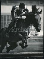 cca 1975 Gebhardt György (1910-1993) 2 db vintage fotóművészeti alkotása lovakról, 15,5x24 cm és 24x18 cm