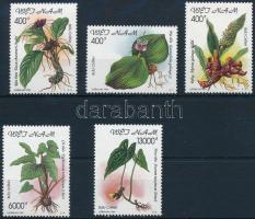 Gyógynövények sor Herbs set