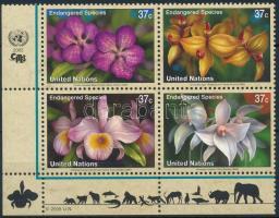 Endangered plant species corner block of 4, Veszélyeztetett növényfajok ívsarki négyestömb