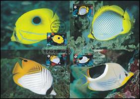 WWF Butterfly Fish set on 4 CM WWF Pillangóhalak sor 4 db CM-en