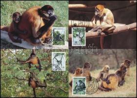 WWF Monkies set 4 CM WWF: Majmok sor 4 db CM-en