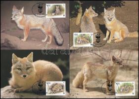 WWF: Rókák 4 db CM WWF Foxes 4 CM