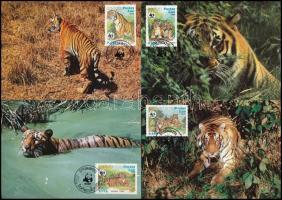WWF: Tigris sor 4 db CM-en WWF Tiger set 4 CM
