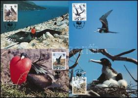 WWF: Birds set on 4 CM, WWF: Madarak sor 4 db CM-en