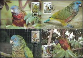 WWF Parrot set on 4 CM WWF: Papagáj sor 4 db CM-en