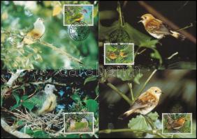 WWF Rare bird species set on 4 CM, WWF Ritka madarak sor  4 CM