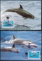 WWF Dolphins set 4 CM, WWF Delfinek sor 4 db CM-en