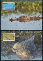 WWF Crocodile set on 4 CM WWF Bordás krokodil sor 4 db CM-en