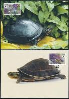 WWF: Teknősök sor 4 db CM-en WWF Turtles set 4 CM