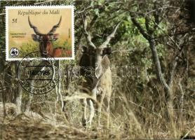 1986 WWF:Állatok CM Mi 1078-1081