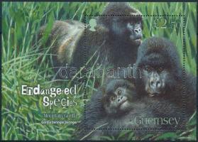 Gorilla block Gorilla blokk