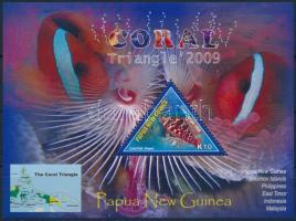 Coral block Korall blokk