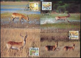 WWF Antilope set on 4 CM WWF antilop sor 4 db CM-en