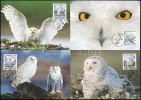 WWF Snowy owl set on 4 M WWF Hóbagoly sor 4 db CM-en