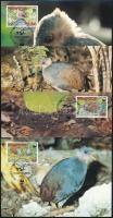 WWF Jungle fowl 4 CM WWF: Dzsungeltyúk 4 db CM-en