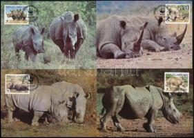 WWF Rhinos 4 CM WWF: Orrszarvúk 4 CM