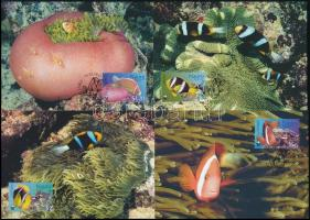 WWF Fishes set 4 CM, WWF: Halak sor 4 db CM-n
